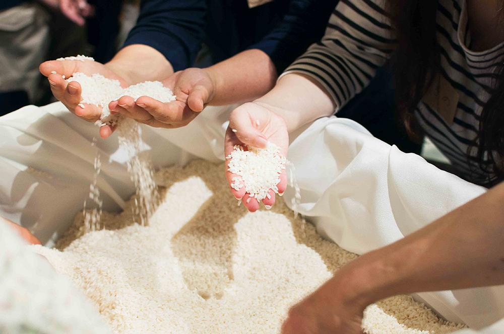 切り返しのポイントは、箱の中心部分にある米と、外側にある米の「温度」と「乾燥」具合に差があることを意識して混ぜること