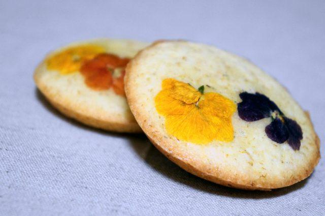 富士山のお花畑_やまなし美味しい甲斐_発酵食品サミットinやまなし:haccola 発酵ライフを楽しむ「ハッコラ」