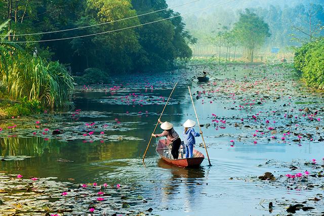 「マム」は、ベトナム人の心の一部です