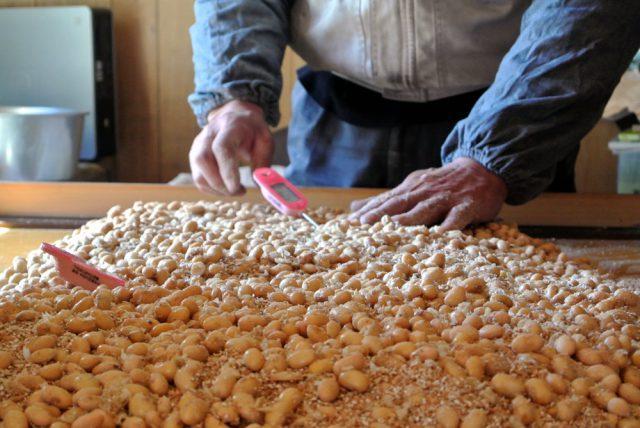 蒸した大豆と焙煎した小麦に麹を合わせ麹室におさめる「引込み」後、麹の温度管理は4日間続きます。