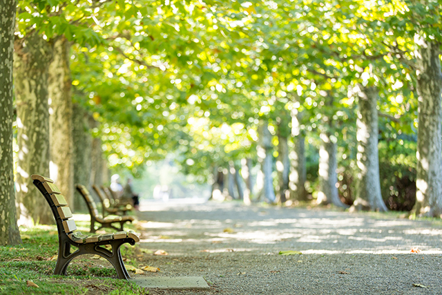 「秋分」は、次の春分までの準備期間の始まり
