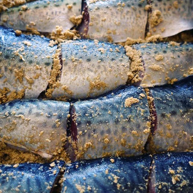 発酵食で腸内環境を整えて、夏バテを予防しよう