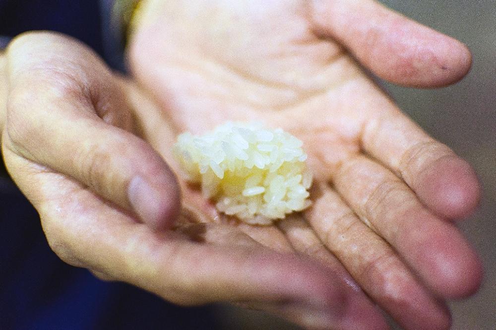 「三河みりん」角谷文治郎商店の蔵見学、蒸米