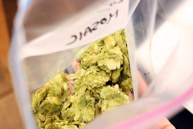 IPAビールの人気により、世界的に品薄状態と言われる柑橘系ホップ(CITRA,MOASAIC)。「ビールはホップの味で決まります!」と唐澤さん