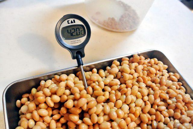 調理用の温度計は、発酵食の自家製に便利なアイテム