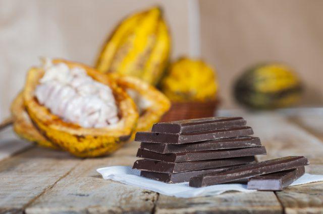 チョコレートも立派な発酵食品!