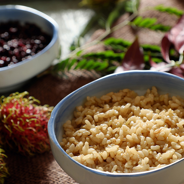 Vietnamese traditional food, com ruou or fermented glutinous rice for may 5th, is double five festival or tet doan ngo in Vietnam