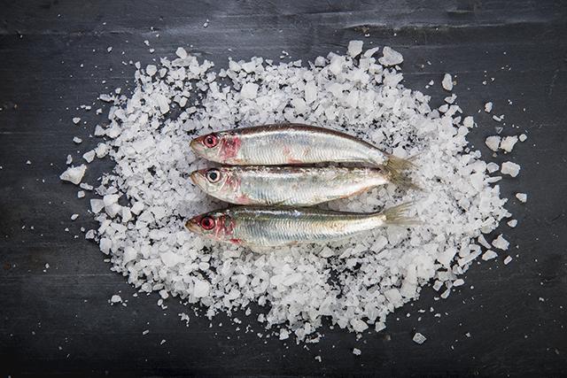 日本三大魚醤のひとつ、石川県の「いしる」には、イワシやサバが使われている
