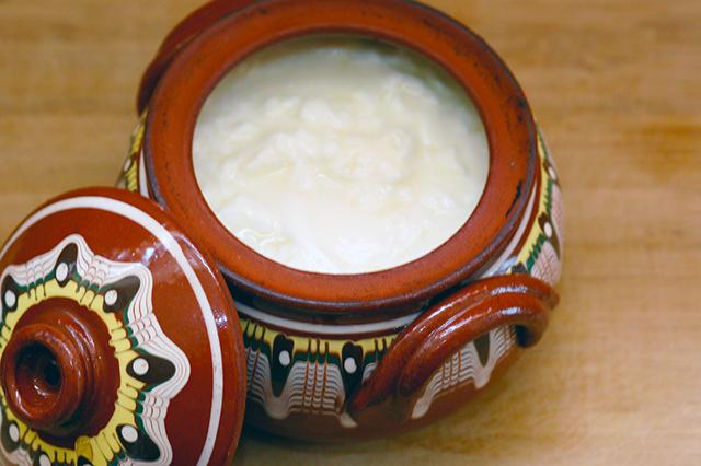 乳を搾った容器の中で乳酸菌が自然増殖したことで、今のヨーグルトに近いものができたそう
