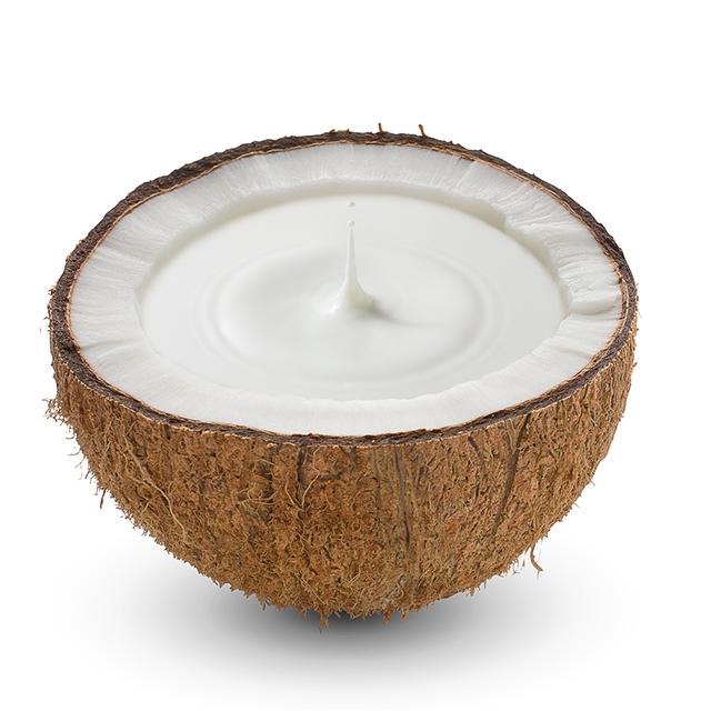 ココナッツミルクでヨーグルトを作ろう!市販のヨーグルト種菌を使ってチャレンジ♪