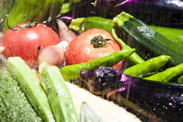 小暑の旬野菜