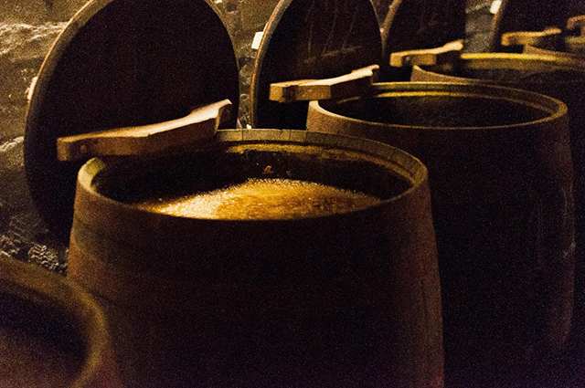 Barrels with Moromi from last week in Moromi chamber