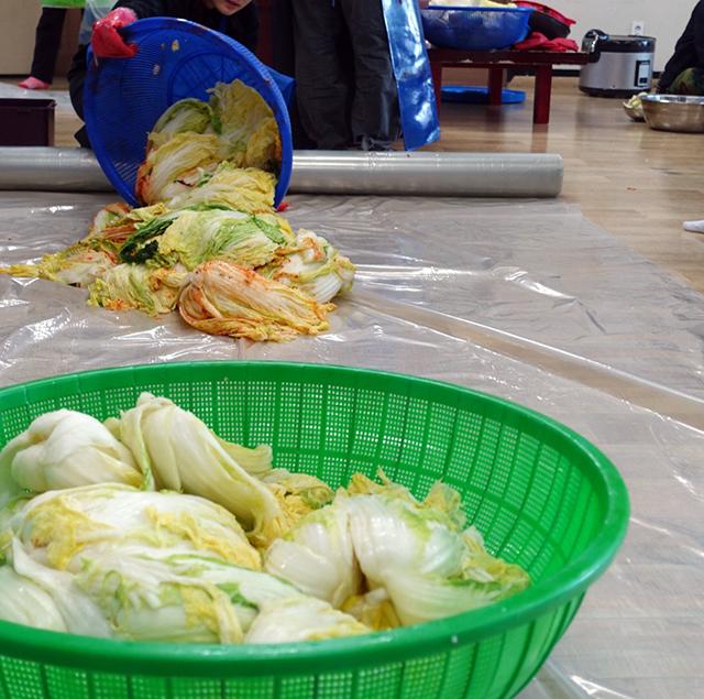 ビニールシートが広げられた。そしてそこへ下漬けされた白菜が積まれ、その横にヤンニョムが流された。