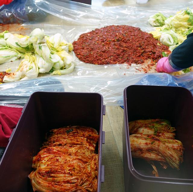 ヤンニョムを入れた白菜をキムチタッパーへ入れる:白菜の本漬け