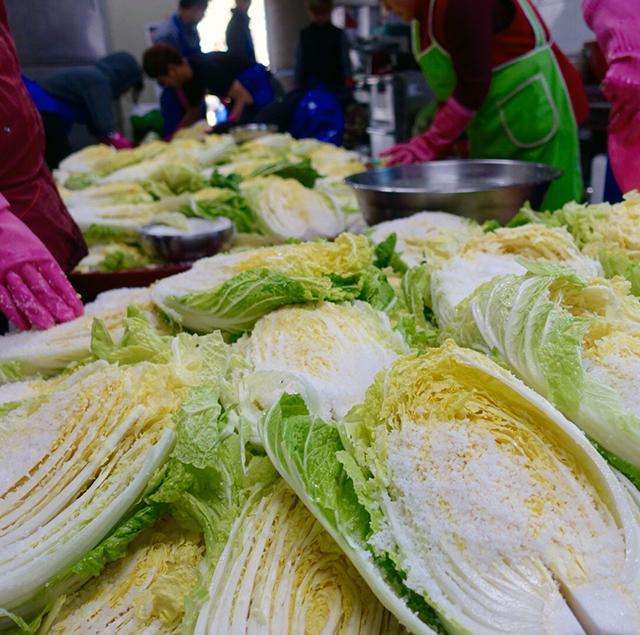 粗めの海塩を白菜の葉1枚1枚の間にすり込んでいく